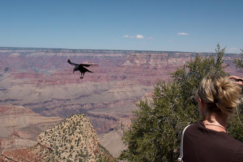 Grand Canyon National Park, South Rim, Arizona